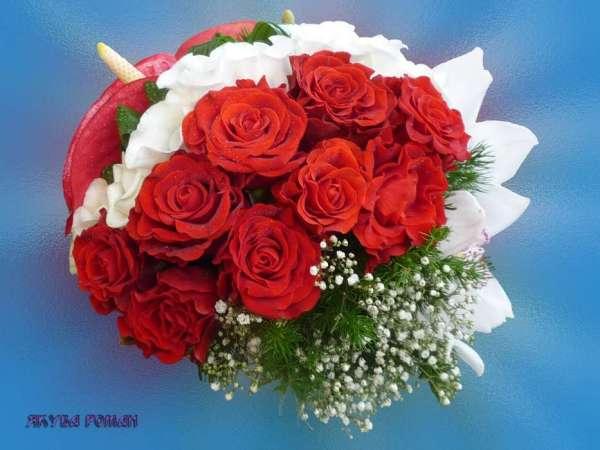 Скачати шпалеру на телефон: Свята, Рослини, Квіти, Рози ...