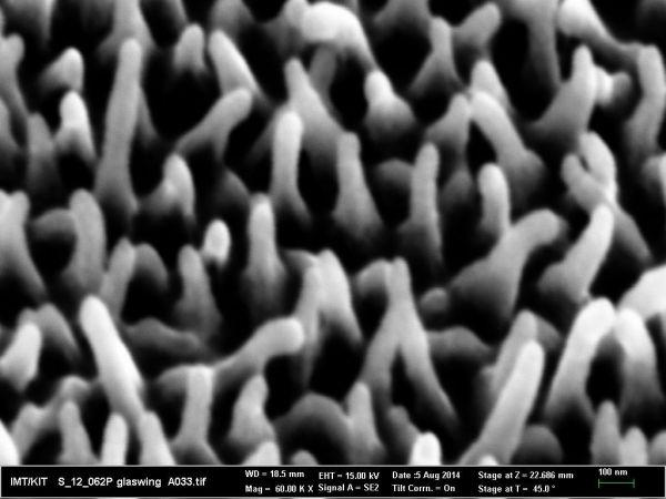 Nanostruktury w skrzydłach motyla