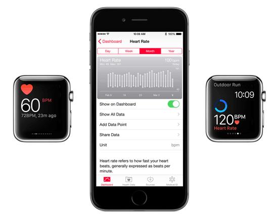 Apple Watch - pomiar tętna