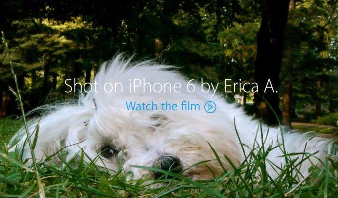 Shot on iPhone 6