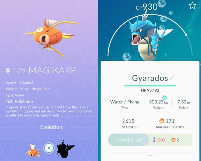 Magikarp (po ewolucji) to Gyarados z Pokemon GO