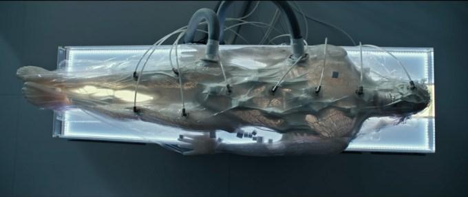 Meet Walter - ujęcie z wideo Alien: Covenant
