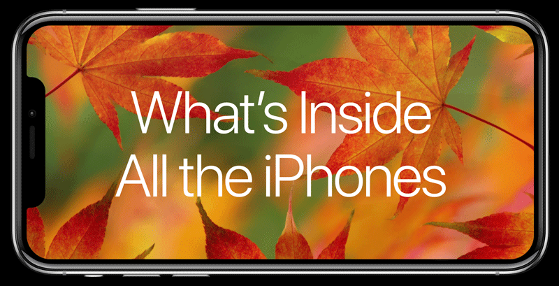 Co ma w środku każdy iPhone?