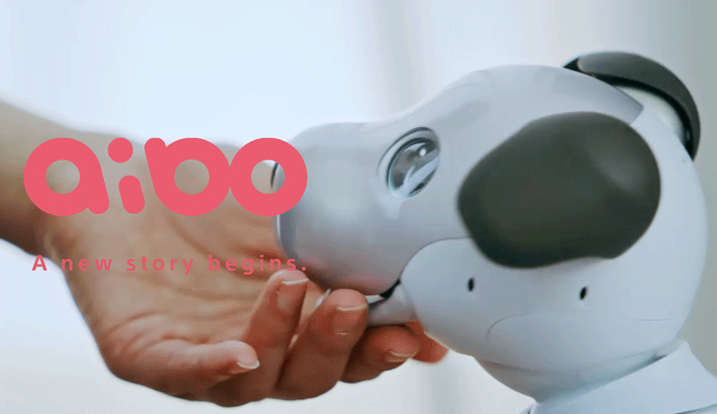 Aibo - pies robot