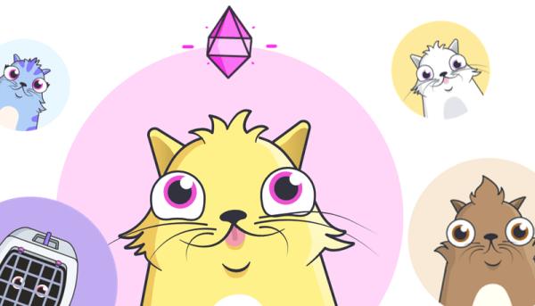 Miliony dolarów poszły na wirtualne koty w blockchainie Ethereum