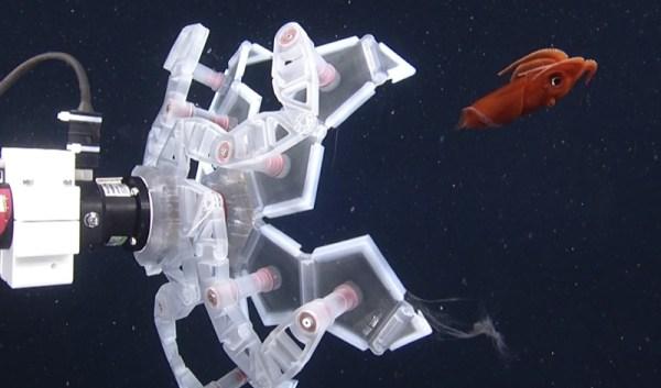 Naukowcy z Harvardu stworzyli ramię robota łowiące morskie zwierzęta