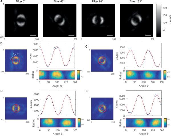 """Naukowcy po raz pierwszy sfotografowali tzw. """"splątanie kwantowe"""""""