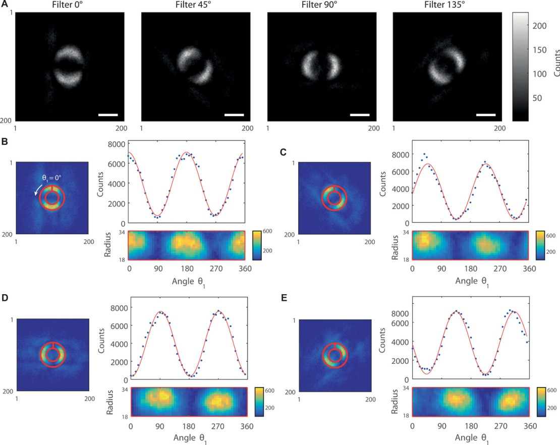 Splątanie kwantowe uchwycone na zdjęciu