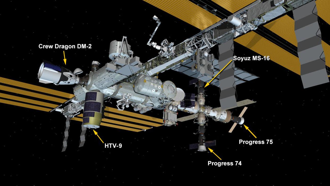 Grafika prezentująca gdzie zadokował Crew Dragon DM-2 na Międzynarodowej Stacji Kosmicznej (ISS)?