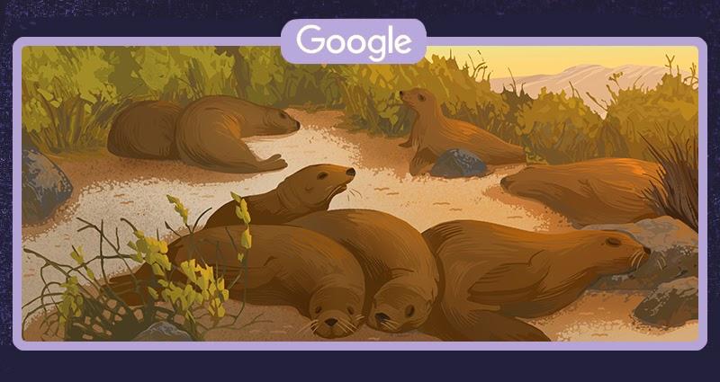 Uszanka galapagoska (Google Doodle)