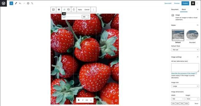 WordPress 5.5 - edycja obrazka