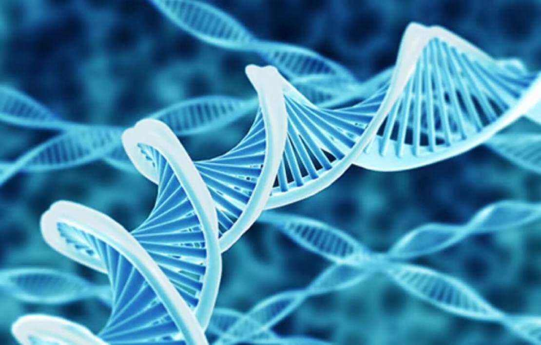 Sekwencja DNA