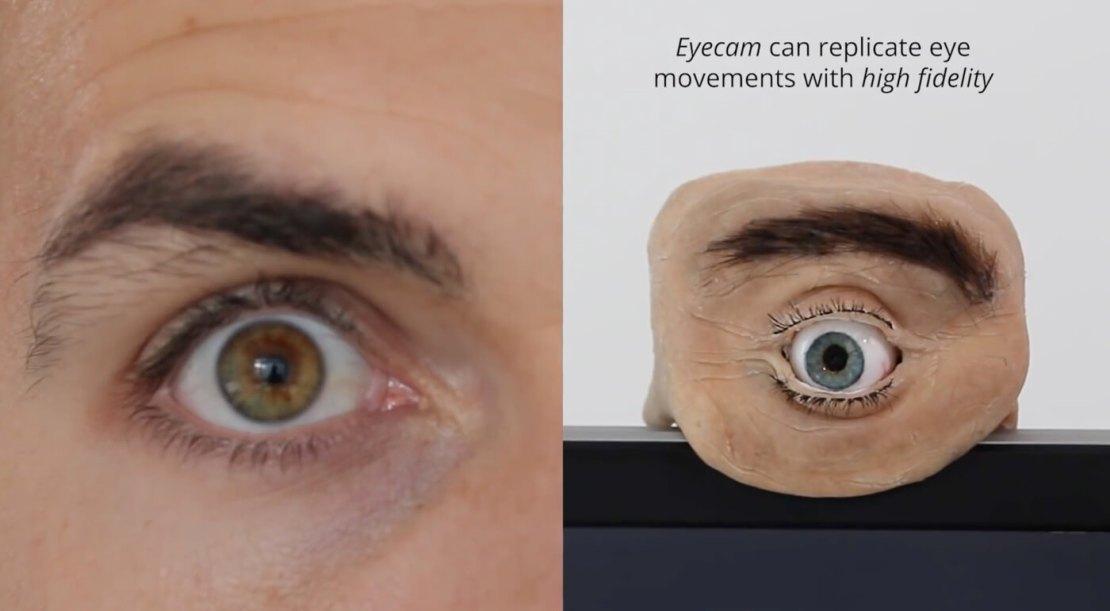 Eyecam - kamera imitująca ludzkie oko