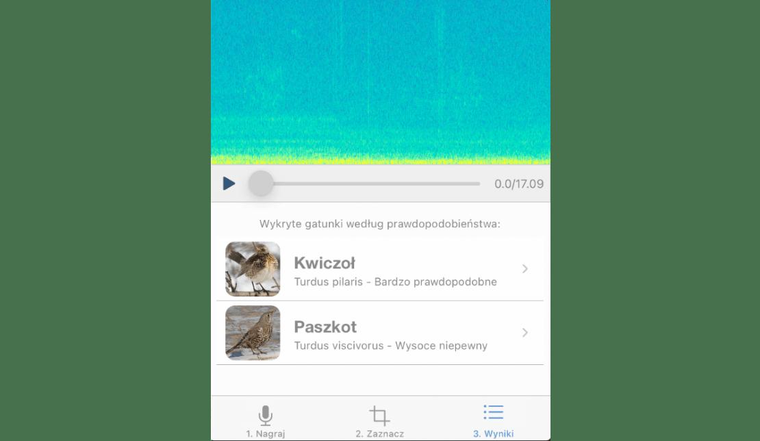 Testowy rezultat rozpoznawania ptaków przez aplikację BirdNET