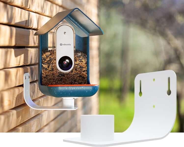 Inteligentny karmnik dla ptaków Bird Buddy z montażem do ściany