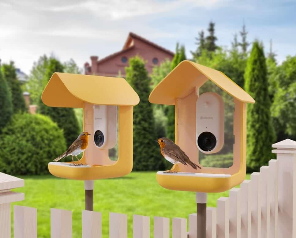 Bird Buddy - żółte smart karmniki