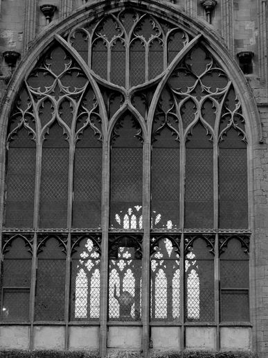 Cathedral Windows At Rareaquaticbadger S Moblog