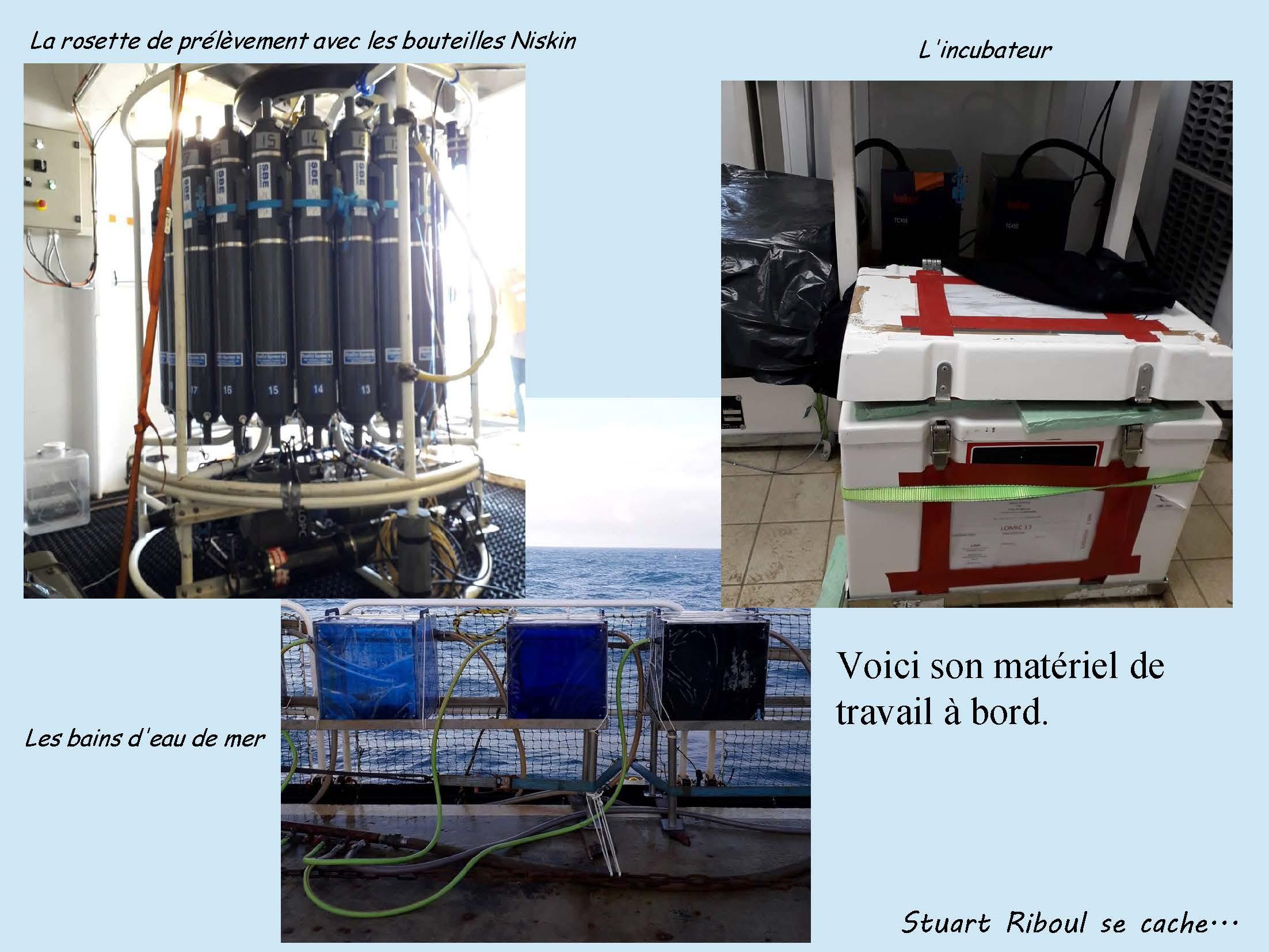 Stuart Riboul - Adopt a float_MOBYDICK-1_Page_07