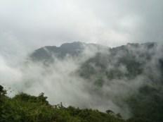 La RB Yuscarán conserva el Ecosistema Bosque Nublado
