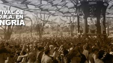 Photo of Festival en Ozora