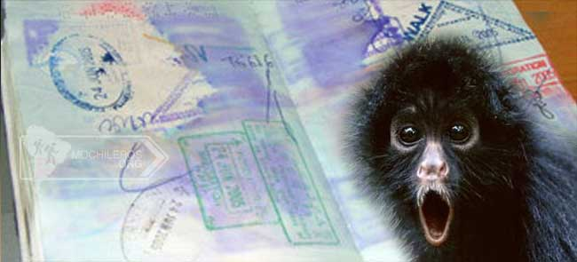 perder pasaporte documentos