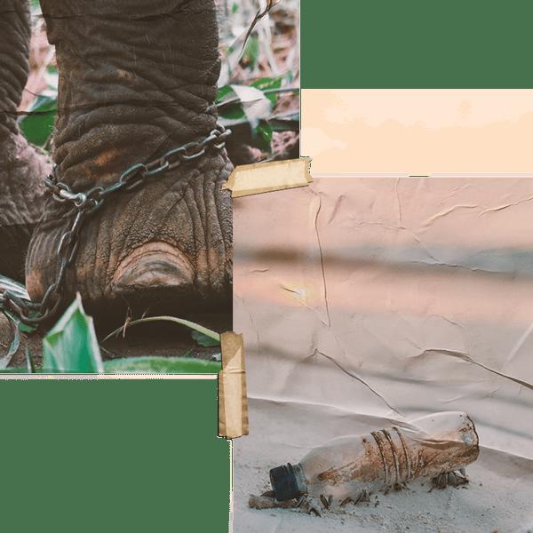Viajes sostenibles Blogº