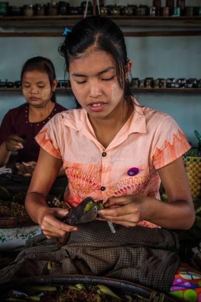 Myanmar-Birmania-niña-tabaco-lago-Inle