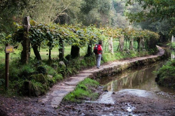 Peregrino-haciendo-Camino-de-Santiago