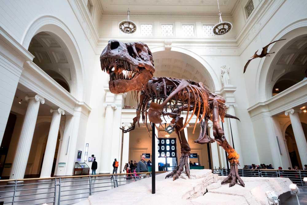 Qué ver en Chicago: el Museo de Ciencia e Historia de Chicago