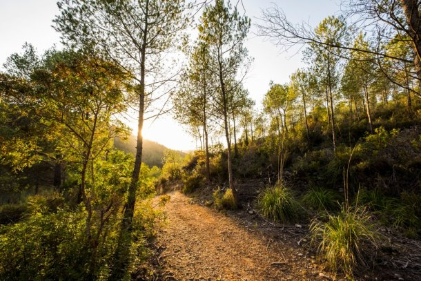 Espacio natural parc del Garraf