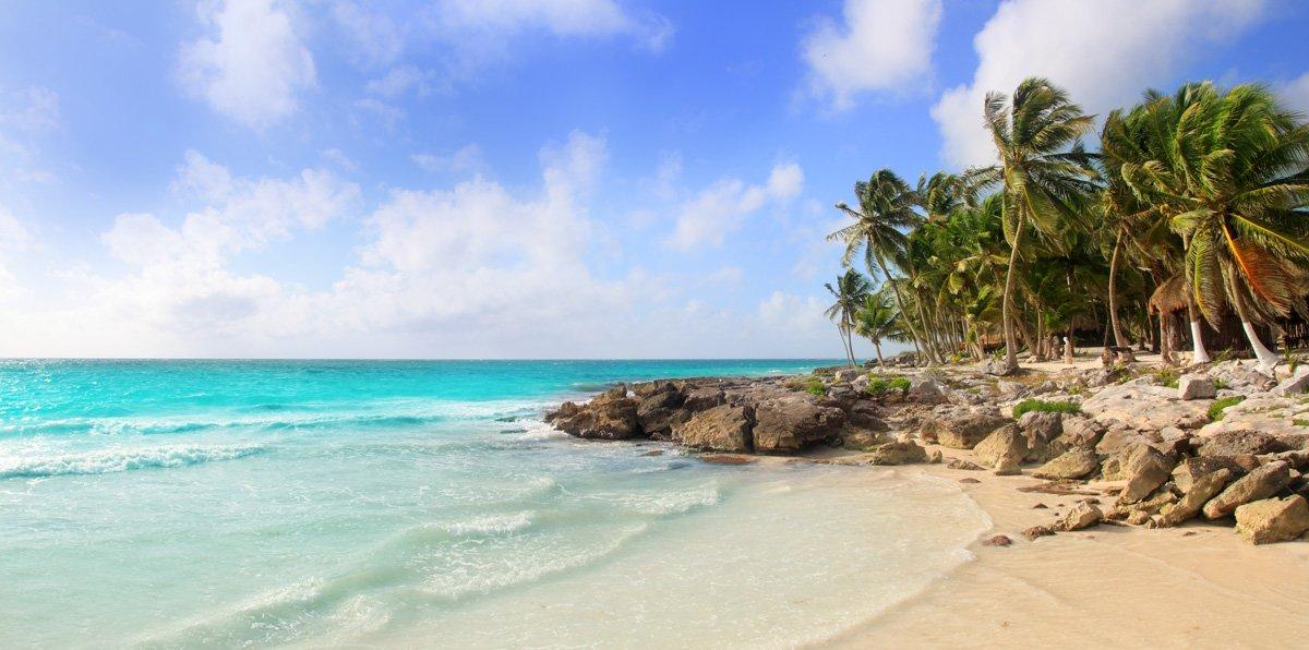 Excursiones en Riviera Maya y una playa con palmeras