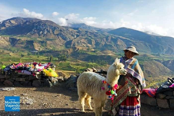 Como llegar al Cañón del Colca desde Arequipa, Perú