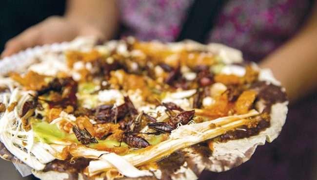 comida mexicana - tlayuda
