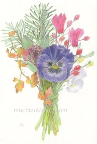 「冬の庭のブーケ」望月麻里(鉛筆、色鉛筆)illustrated by Mari Mochizuki / サポサポ プロジェクト出品用