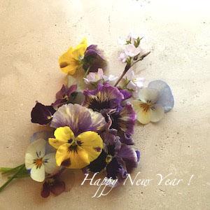 NEWS:望月麻里のオフィシャルサイト・2020年新春ご挨拶