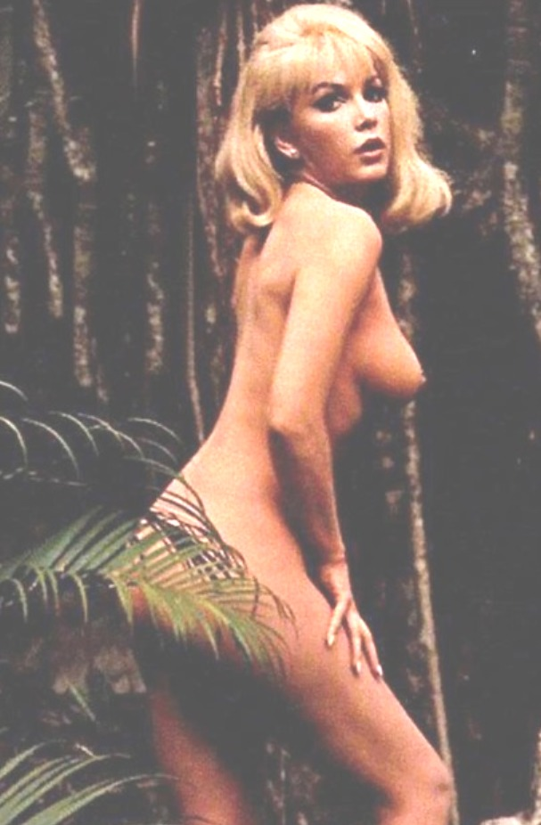 Opinion, inger stevens nude for