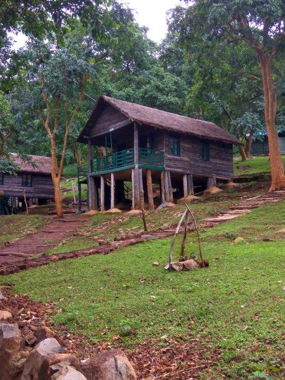 The log-hut