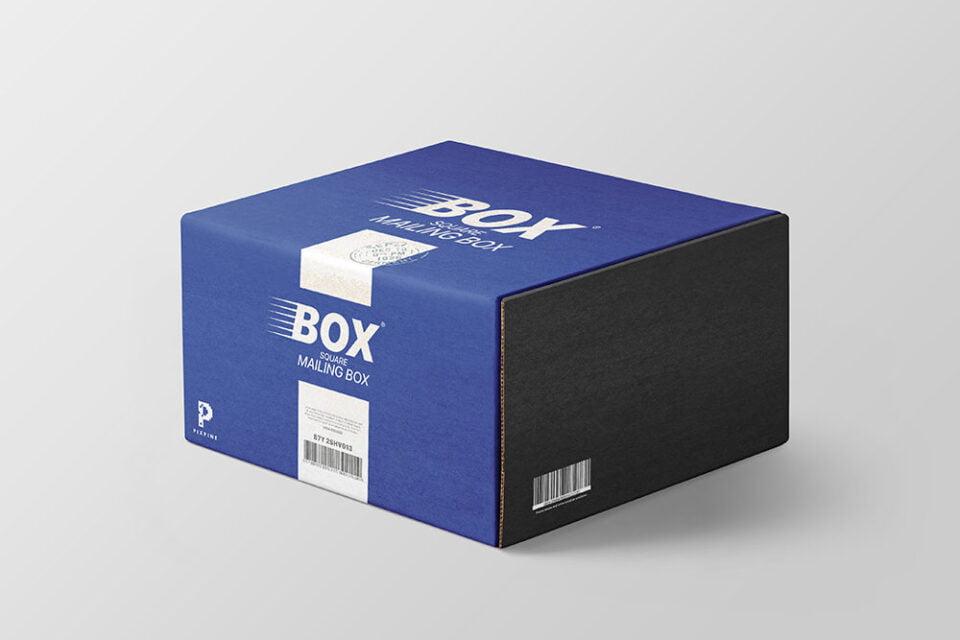 Download THE STUDENT: Get 28+ Box Mockup Kostenlos Online