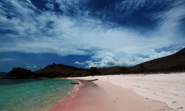beautiful pink beaches Komodo National Park – Indonesia