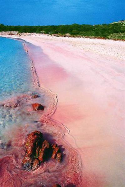 beautiful pink beaches Sardinia – Italy