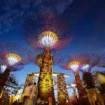 best attractions in Singapore, Bay Gardens 9
