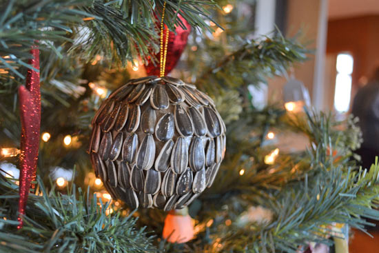diy christmas ornament, natural seeds