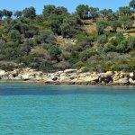 beautiful beach in Halkidiki 15