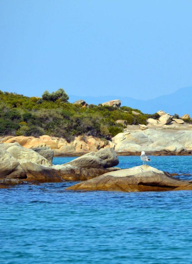 beautiful beach in Halkidiki 26