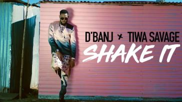 Shake it video by D'banj ft Tiwa Savage