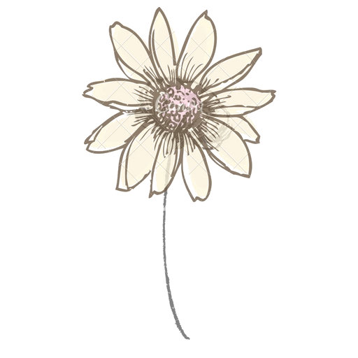 cropped-flower-transparent.png