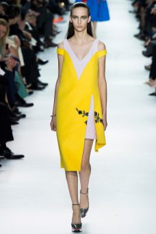 Waleska Gorczevski - Christian Dior Fall 2014