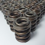 Cosworth DR4601 Valve Springs