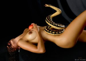 http://charmeurindien.deviantart.com/art/Eve-Renversee-517994696