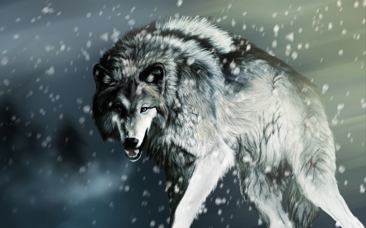 Wounded-wolf-in-the-winter_1920x1200